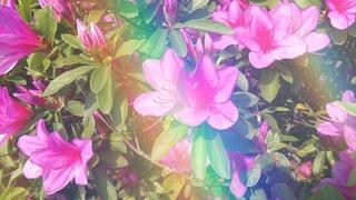 18-04-22-12-59-57-312_deco.jpg
